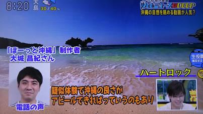 沖縄 ぼーっと